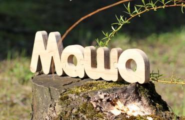Деревянные буквы-пазл
