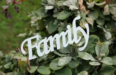 Слово семья из дерева