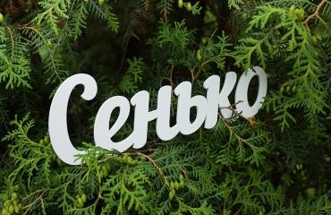 Окрашенное слово из дерева